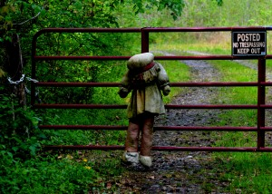 A doll guards the entrance to Edward Maddox's Pazzapatanzy Creek acreage at the turnoff to State Route 605 from State Route 218.